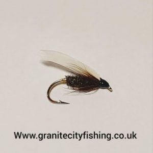 Coachman wet fly.