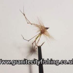 Standard Yellow Daddy Long Legs