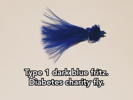 Type 1 T10 Dark Blue Fritz. (Charity Fly)